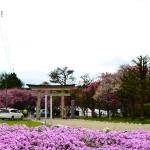 【mį】石崎地主海神社と四稜郭