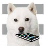 【mį】iPhoneのデーター通信料と締め日