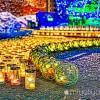 【mį】みんなで作ろう函館夜景を撮影して来たよ♬