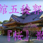 【mį】ミヤチャン初の4K動画!!五稜郭『桜』散歩