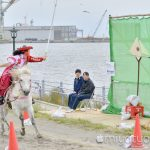 【mį】どさんこフェスタin函館・やぶさめ競技全国大会日本一決定戦を見て来ました