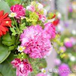 【mį】はこだて花と緑のフェスティバル2016に行って来ましたー!!