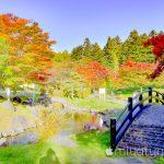 【mį】函館の秋を探しに♬