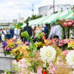 【mį】はこだて花と緑のフェスティバル2017に行って来ました!!